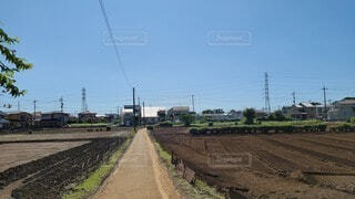 農地の道の写真・画像素材[3735589]