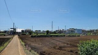 広大な畑の写真・画像素材[3735590]