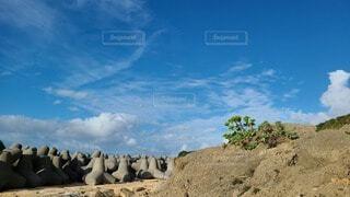 テトラポッドのあるビーチの写真・画像素材[4033374]