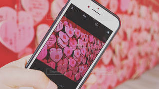 ピンクの写真・画像素材[1408586]