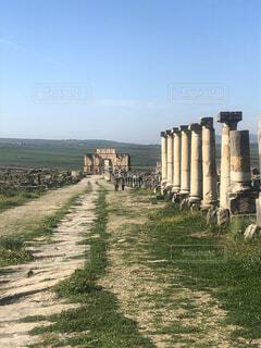 ローマ遺跡(モロッコ,ヴォルビリス遺跡)の写真・画像素材[3698181]