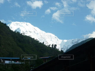 森の奥に雪山が見える景色の写真・画像素材[3939523]