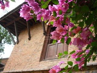 レンガ造りの建物と庭に咲いた花の写真・画像素材[3966766]