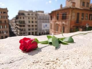 イタリア スペイン広場の写真・画像素材[3701219]