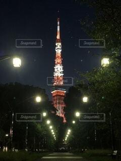 公園からみた東京タワーの写真・画像素材[3707093]