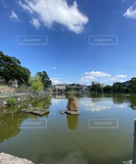 猿沢池の写真・画像素材[4771944]