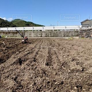 農作業の写真・画像素材[3815411]