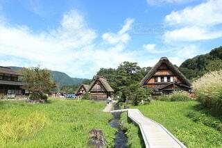 緑豊かな畑の上にある家 白川郷の写真・画像素材[3724143]