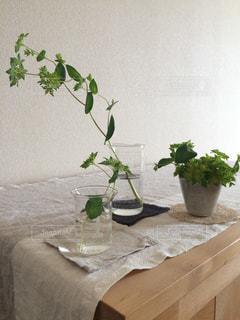 テーブルの上に座って花の花瓶の写真・画像素材[1009532]