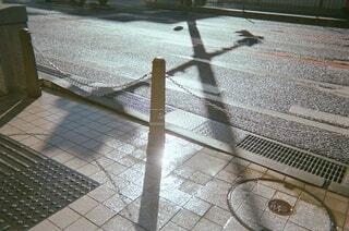 雨上がりの写真・画像素材[3935256]