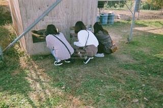 友達の背中の写真・画像素材[3935296]