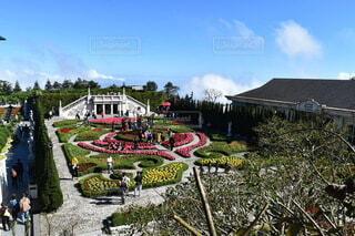 ベトナム バーナーヒルズ 庭園の写真・画像素材[3736200]