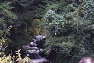 亀岩の洞窟の写真・画像素材[3822711]