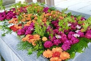 手水舎の花の写真・画像素材[3739361]