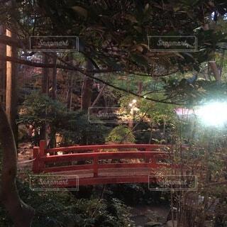 赤い橋の写真・画像素材[3743355]
