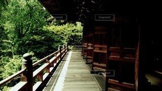 木製のベンチの写真・画像素材[4021266]