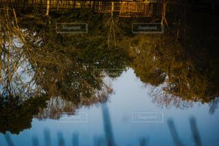 水の体の隣にある池の写真・画像素材[4176687]