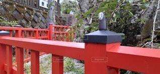 フェンスの前のベンチの写真・画像素材[4687952]