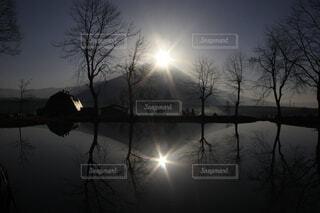 幻想的な朝の写真・画像素材[4044120]
