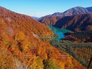 ゴンドラから見下ろす紅葉の写真・画像素材[3795259]