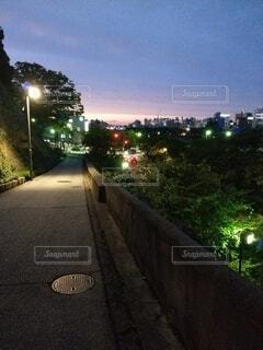 桜坂の夕景の写真・画像素材[3766667]