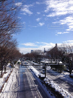 渋谷の雪景色の写真・画像素材[4819688]