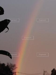 景色の写真・画像素材[4248945]