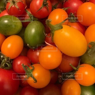 トマト詰め合わせの写真・画像素材[3913720]