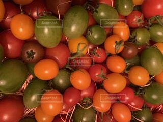 トマト詰め合わせの写真・画像素材[3913724]