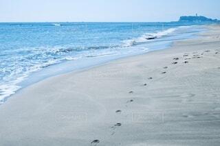 海。の写真・画像素材[4667733]
