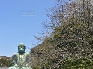 晴天の鎌倉大仏の写真・画像素材[3790045]