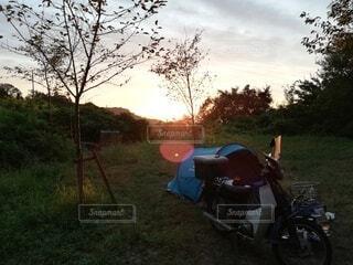 キャンプの写真・画像素材[3776253]