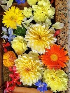 カラフルな花手水の写真・画像素材[3774066]
