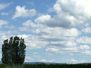 空の写真・画像素材[206107]