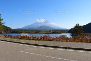 精進湖から富士山を望むの写真・画像素材[3813319]