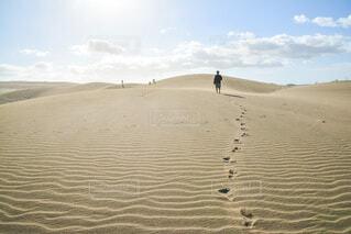 フィジーの砂丘の写真・画像素材[3805134]