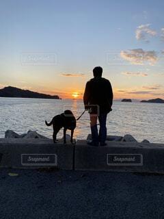夕日を見つめる人と犬の写真・画像素材[3870471]