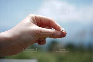指でつまむの写真・画像素材[3789505]