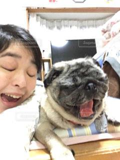 No.218757 犬