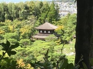 上から見る銀閣寺の写真・画像素材[3799538]