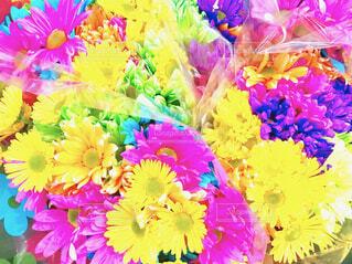 カラフルで鮮やかな色の花束のアップの写真・画像素材[4307001]