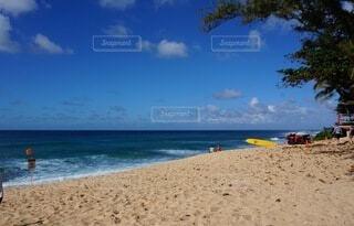 ハワイのビーチの写真・画像素材[3806930]