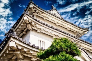 丸亀城の写真・画像素材[3865243]
