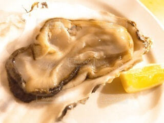 oyster barの生牡蠣の写真・画像素材[3814655]