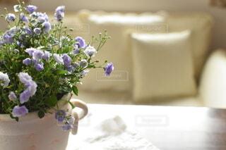 花のある暮らしの写真・画像素材[3818136]