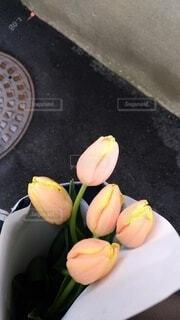 チューリップの花束の写真・画像素材[3833444]
