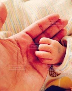 親と子の写真・画像素材[3834465]