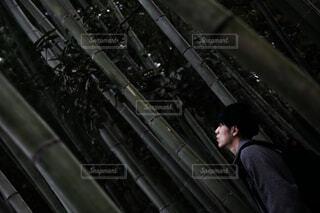 竹林で上を見上げる男性の写真・画像素材[3837283]