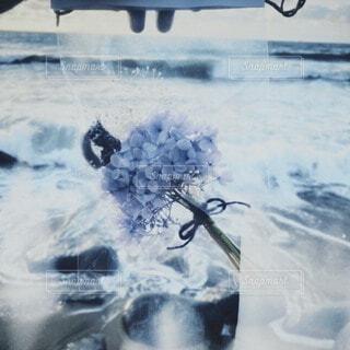 波と花束の写真・画像素材[3874725]