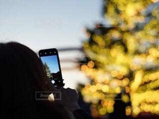 クリスマスのイルミネーションとシルエットの写真・画像素材[3846692]